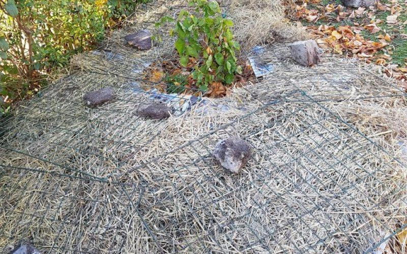 Sedan på med förskönande halmlager samt vindskydd i form av kompostgaller och stenar.